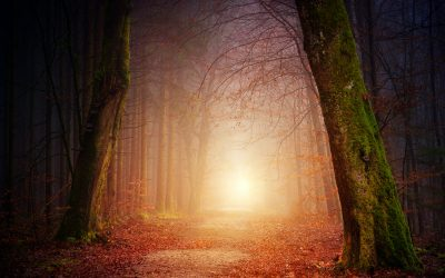 Wholing is the New Healing:  An Invitation to Abandon Your Brokenness